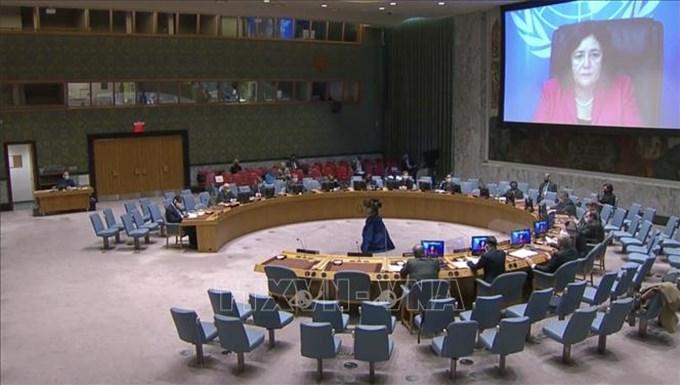 Việt Nam và HĐBA: Việt Nam bày tỏ quan ngại về tình hình bạo lực ở CHDC Congo