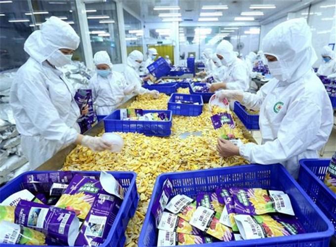 Việt Nam cần đầu tư vào lĩnh vực chế biến và đóng gói nông sản