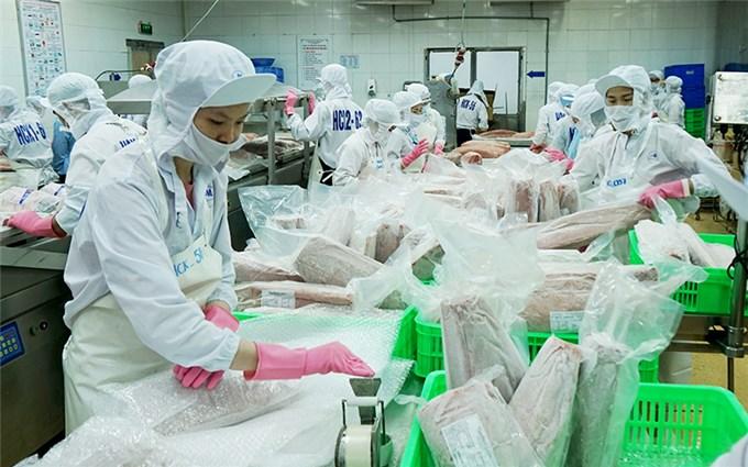 Quyết liệt phòng, chống khai thác hải sản bất hợp pháp