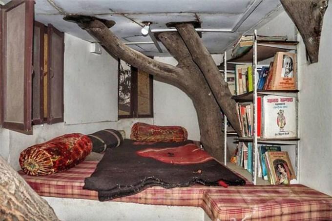 Ngôi nhà 4 tầng tọa lạc trên... cây xoài hơn 80 năm tuổi