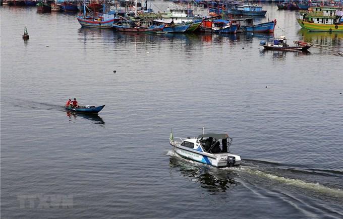 Dịch COVID-19: Đà Nẵng tiếp tục dừng hoạt động của cảng cá Thọ Quang