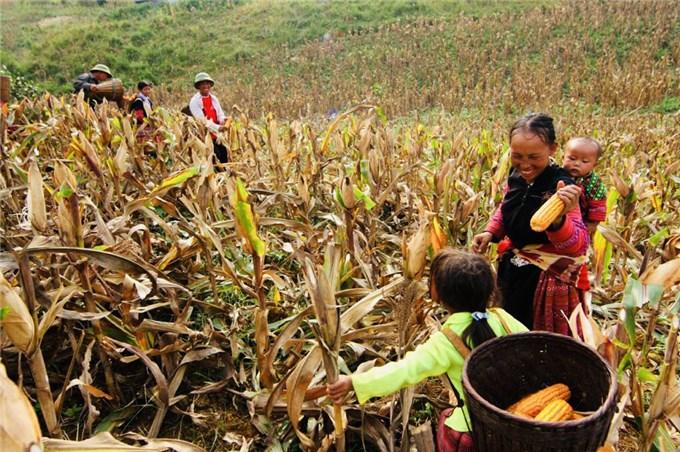 Mèn mén nét độc đáo của ẩm thực người Mông ở Hà Giang