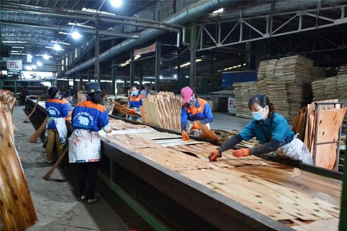 Vượt đại dịch để sản xuất, xuất khẩu sản phẩm sang thị trường Mỹ