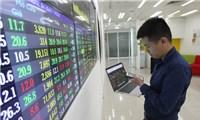 Thị trường chứng khoán Việt Nam và những kỷ lục trong'Năm COVID-19'