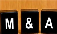 Cơ hội M&A trên thị trường Việt Nam: Gia tăng giá trị thương hiệu