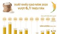 Năm 2020 xuất khẩu gạo của cả nước vượt 6,1 triệu tấn