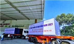 Lô gạo thơm xuất khẩu đầu năm 2021 đạt giá 750 USD mỗi tấn