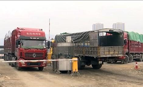 Việt Nam là thị trường xuất khẩu lớn thứ 5 của Trung Quốc