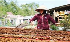 Đến Hà Lam thăm làng hương trầm