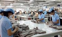 Thúc đẩy đầu tư Việt Nam - Ấn Độ