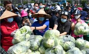 Cộng đồng mạng kêu gọi giải cứu nông sản cho bà con vùng dịch