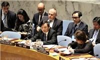 Các hoạt động của Việt Nam trong vai trò  Chủ tịch Hội đồng Bảo an Liên Hợp Quốc