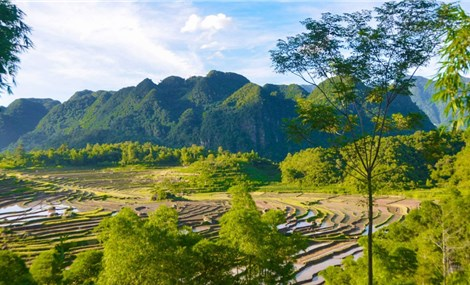 Pu Luong for Nature Lovers