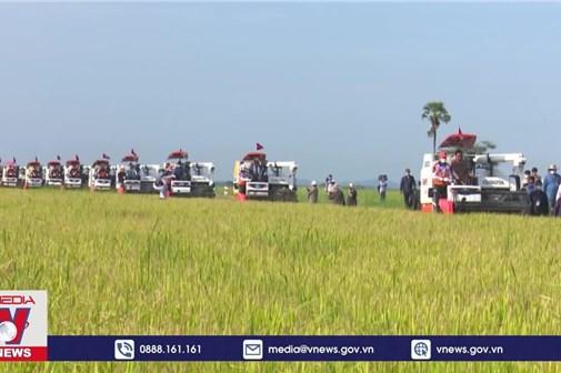 Xuất khẩu nông sản của Campuchia vượt 2 tỷ USD