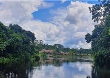 Người Việt mang sóng 4G tới rừng rậm Amazon