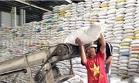 Mỹ dự báo Việt Nam vẫn đứng thứ 2 về xuất khẩu gạo