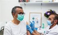Không tiết  lộ loại vắc xin gì mà Tổng Giám đốc WHO tiêm phòng Covid;