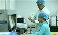 BáoÚc kỳ vọng vào vắc xin chống COVID-19 do Việt Nam sản xuất trong nước