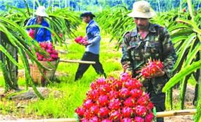 Xuất khẩu nông sản đạt gần 23 tỷ USD