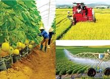 Ngành nông nghiệp thực phẩm: Triển vọng góp phần phục hồi kinh tế Việt Nam