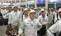 Lao động Việt Nam vào Nhật giảm mạnh do dịch COVID-19