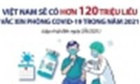 Bộ Y tế phối hợp với TTXVN xây dựng tiến độ đàm phán, mua và cung ứng vắc xin phòng COVID-19  tại Việt Nam năm 2021