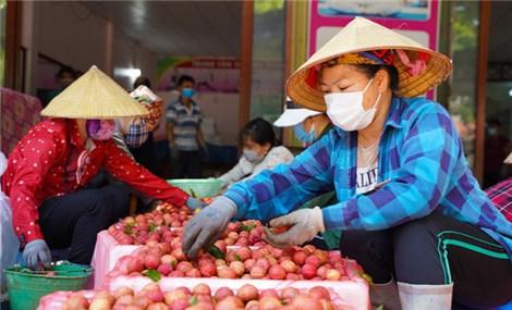 Thương nhân Trung Quốc đặt mua 30 nghìn tấn vải thiều