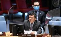 Việt Nam kêu gọi chấp nhận đề xuất hoà bình cho Yemen