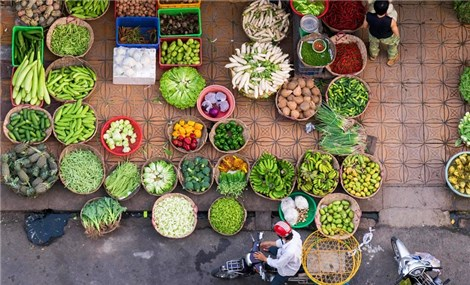 Vietnam among top destinations perfect for solo travel: Lonely Planet