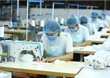 Bôi trơn chuỗi cung ứng thương mại giữa 7 nền kinh tế ChâuÁ - Thái Bình Dương