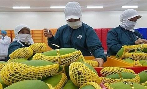 Fruit, vegetables exports to hit US$4 billion