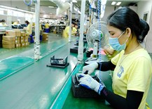 Vietnam expects no trade barrier in export to US: Trade Ministry