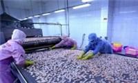 Tháo gỡ khó khăn cho chuỗi cung ứng tiêu thụ thủy sản