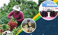 Thúc đẩy phát triển kinh tế số nông nghiệp, nông thôn thời Covid