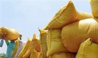 Xuất khẩu gạo Việt Nam trong bối cảnh dịch bệnh Covid-19?