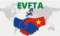 Xuất khẩu Việt Nam sang EU tăng liên tục và ổn định bất chấp dịch bệnh
