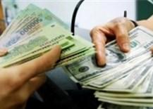 Tạm dừng giao dịch ngoại tệ với tổ chức tín dụng nếu không nộp báo cáo đúng hạn