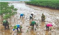 Ngân hàng ADB phê duyệt gói tài trợ 60 triệu USD cho Việt Nam để tăng cường khả năng chống chịu với biến đổi khí hậu