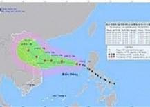 """Siêu bão""""tương tác"""" bão ảnh hưởng lớn  khoảng 800.000 dân có thể phải sơ tán"""