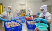 Nghị quyết 105: Cấp bách hỗ trợ, phục hồi sản xuất kinh doanh