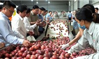 Vietnam aims to become world's farm produce granary