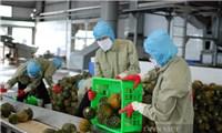 Chủ động thích ứng trước quy định nhập khẩu nông sản mới