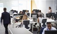 Vùng vịnh và mô hình làm việc văn phòng 4 ngày/tuần