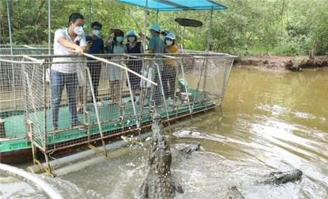 TP. Hồ Chí Minh mở lại du lịch liên tỉnh từ tháng 11