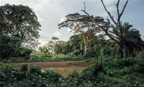 Động lực mới cho nỗ lực bảo tồn đa dạng sinh học