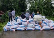 Sụt lún đê ở Hà Nội do hoàn lưu bão