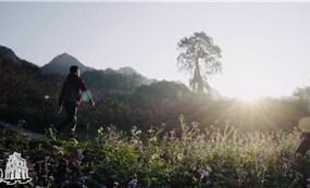 Nét đẹp thanh bình bản người Mông ở Pa Phách, Sơn La