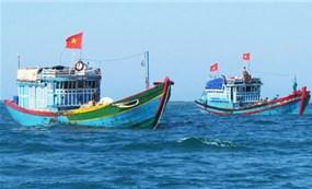 Hội Nghề cá yêu cầu Trung Quốc bồi thường vì gây chìm tàu ngư dân ở Hoàng Sa