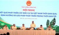 Thủ tướng dự Hội nghị phát triển cây mắc ca