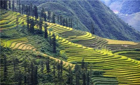 Introducing Vietnam
